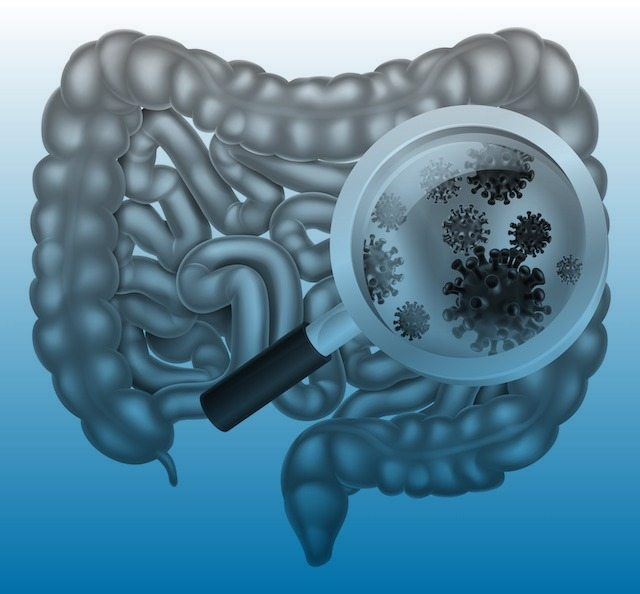 Leaky Gut | Autism | Gut Brain Connection