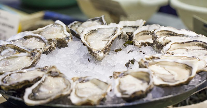 Zinc in Oysters for Brain Health